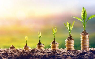 BVI Jahresbericht 2019: Nachhaltigkeit und Rekordhoch